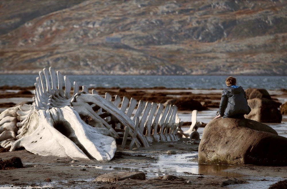 3. Leviathan - Andrey Zvyagintsev, Russia