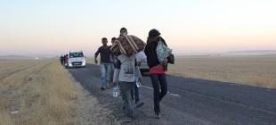 60 bini aşkın Suriyeli Kürt Türkiye'de!