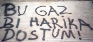 Gezi Parkı eylemlerinden kalan duvar yazıları!