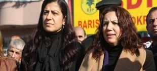 Irmak: Cizre olaylarının sorumlusu hükümettir