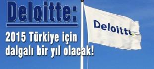 Deloitte: 2015 Türkiye için dalgalı bir yıl olacak!