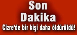 Son Dakika: Cizre'de bir kişi daha öldürüldü!