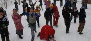 Yarın okulların tatil olduğu iller 20 Şubat 2015