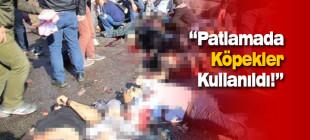 Ankara'daki patlamada köpekler kullanıldı