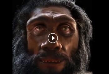 İnsanın 6 milyon yıllık evrimine bu adamın yüzünden bakın