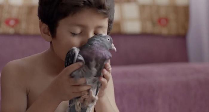 Kısa film Azad