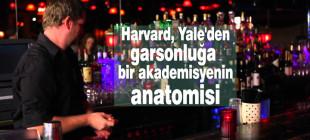 Harvard, Yale'den garsonluğa bir akademisyenin anatomisi