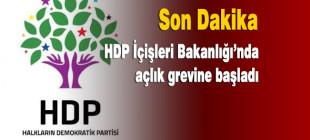 HDP İçişleri Bakanlığı'nda açlık grevine başladı