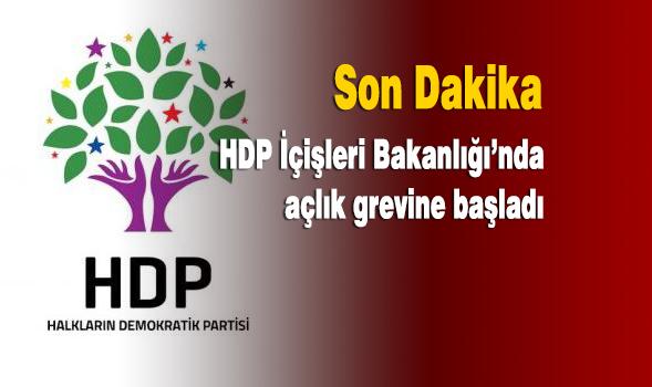 HDP-Açlık Grevi-Cizre