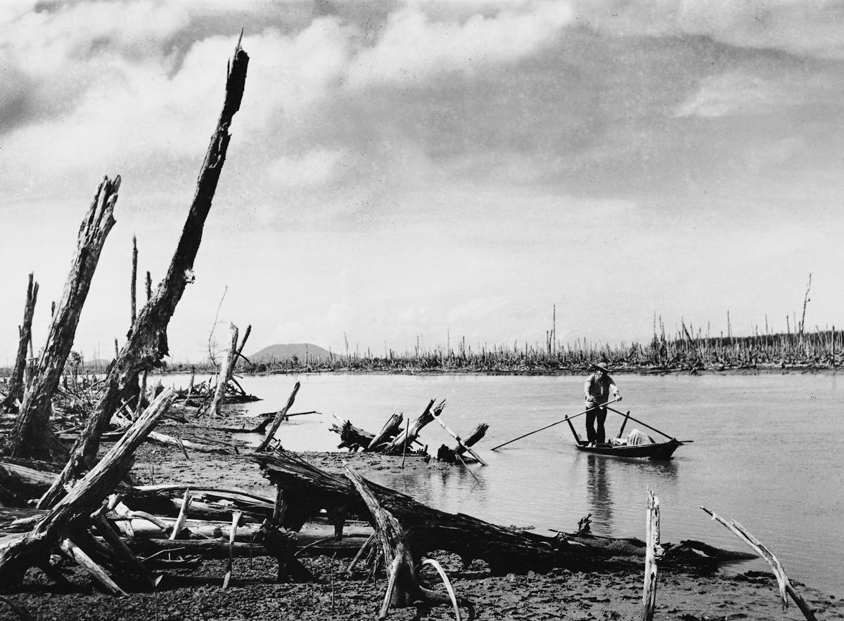 1970, Mekong Deltası'nda kürek çeken bir Viet Cong gerillası.