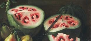 6 meyvenin 'insan eli' değmeden önceki 'yabani' hali