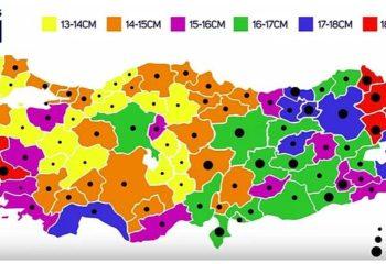 Bir seks işçisinin gözünden Türkiye'nin penis haritası