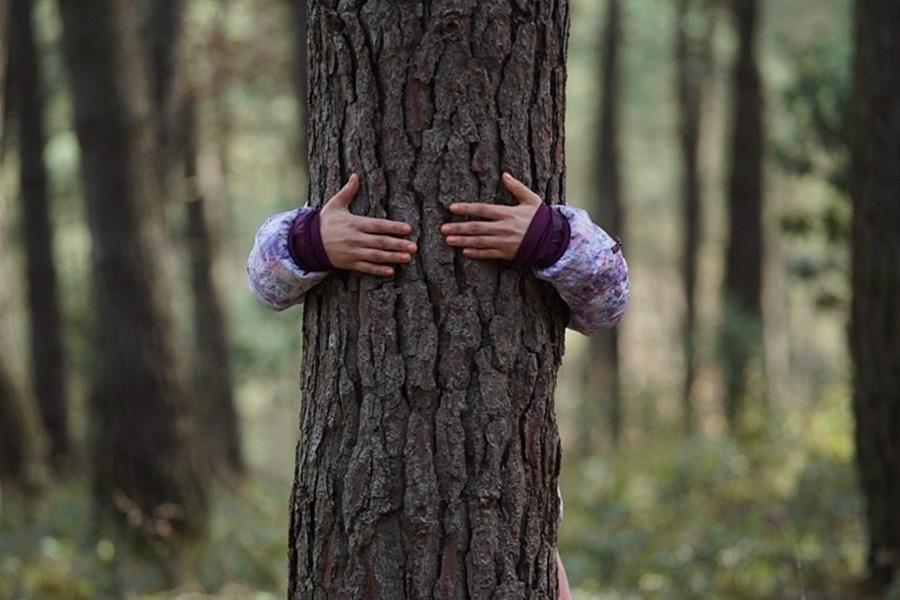 Kıvanç Sezer imzalı 'Küçük Şeyler', 54. Karlovy Vary Film Festivali'nde Ana Yarışma'da