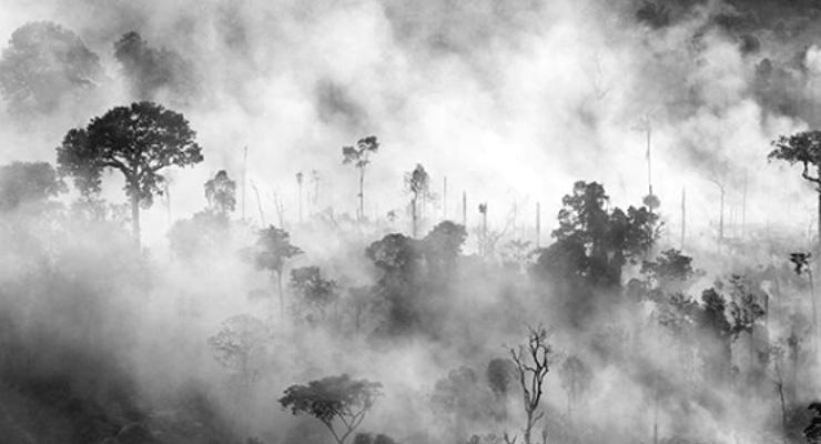 Amazon yangınlarıyla mücadeleye G7'den 22, DiCaprio'dan 5 milyon dolar