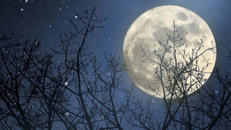 Ay'da milyarlarca yıllık buz bulundu