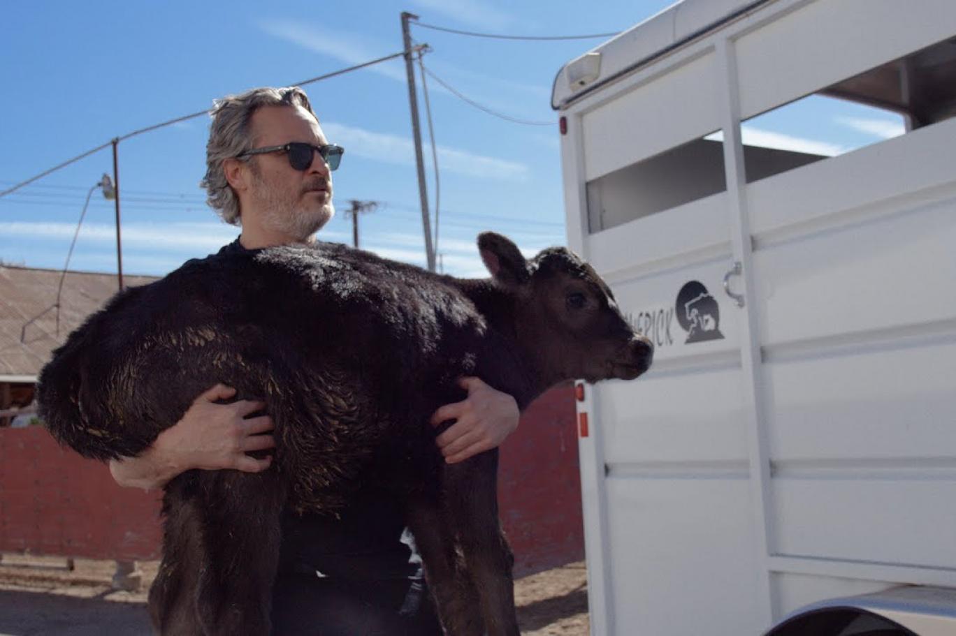 Joaquin Phoenix'ten hayvanların hislerini anlatan yeni film: 'Gunda'
