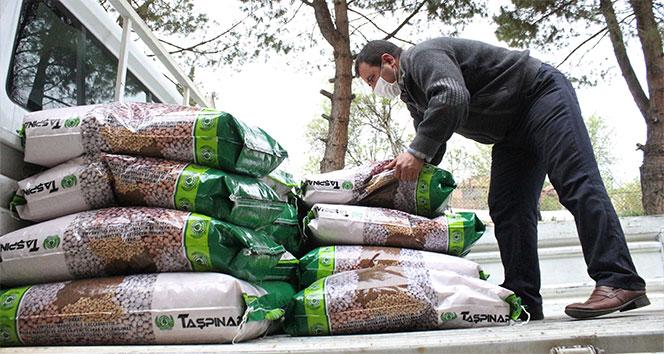 Kuru fasulye tohumu desteğiyle bölgeye 3 buçuk milyon lira katkı sağlanacak